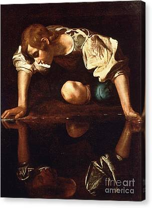 Narcissus Canvas Print by Pg Reproductions