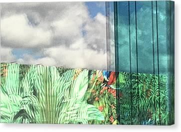 Toucan Postcard Canvas Print - Nardin by Richard Carlton London