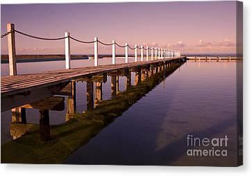 Narrabeen Sunrise Canvas Print by Sheila Smart Fine Art Photography