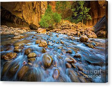 Zion National Park Canvas Print - Narrows Rocky Stream by Inge Johnsson