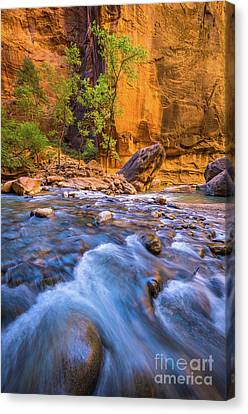 Zion National Park Canvas Print - Narrows Trees by Inge Johnsson