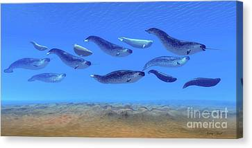 Monoceros Canvas Print - Narwhal Whale Pod by Corey Ford