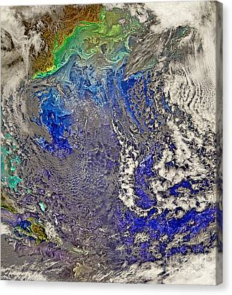 Nasa Turbulent North Atlantic Ocean Canvas Print by Rose Santuci-Sofranko