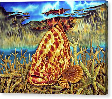 Nassau Grouper And Staghorn Coral Canvas Print by Daniel Jean-Baptiste