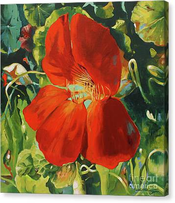 Nasturtium Canvas Print by Lin Petershagen