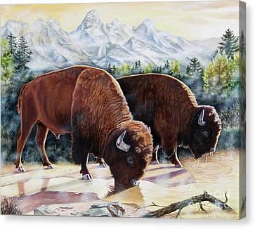 Native Nobility Canvas Print