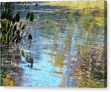 Natural 2 16e Canvas Print
