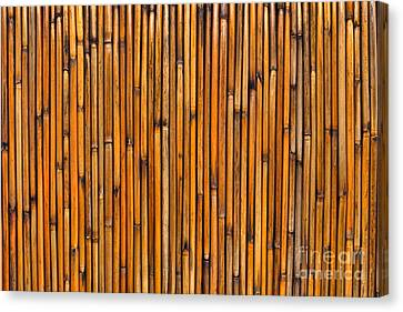 Natural Bamboo Background Canvas Print