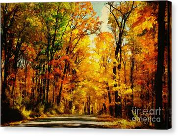 Fall Landscape Canvas Print - Natural Cathedral by Lois Bryan