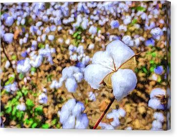 Natural Cotton Canvas Print