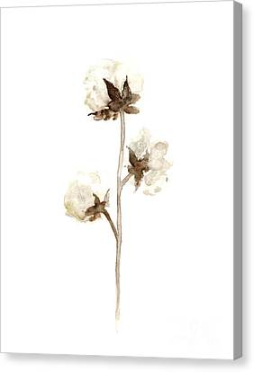 Natural Cotton Wall Hanging Canvas Print by Joanna Szmerdt