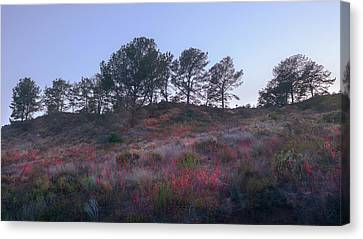 Canvas Print featuring the photograph Natural Embers by Alexander Kunz