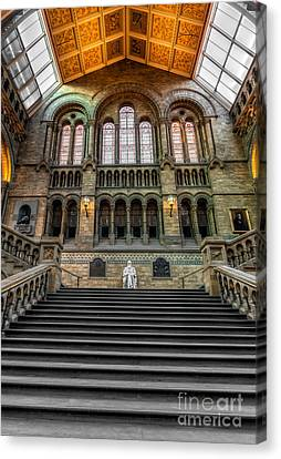 Natural History Museum Canvas Print by Adrian Evans