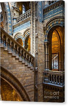 Natural History Museum Staircase Canvas Print by Inge Johnsson