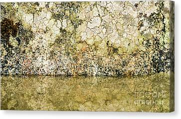 Canvas Print featuring the photograph Natural Stone Background by Torbjorn Swenelius