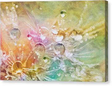 Drop Canvas Print - Nature As A Tender Abstraction by Georgiana Romanovna