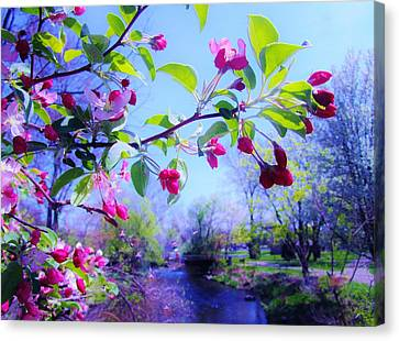 Nature Awakening Canvas Print