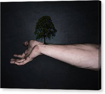 Nature Inside Me Canvas Print by Nicklas Gustafsson