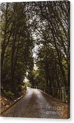 Nature Landscape Photo Of A Scenic Mountain Road Canvas Print by Jorgo Photography - Wall Art Gallery