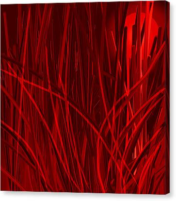 Nature On Fire At Night Canvas Print by Denny Casto