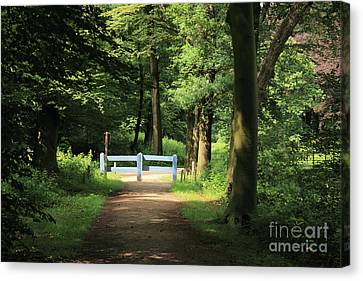 Nature Reserve Netherlands  Canvas Print