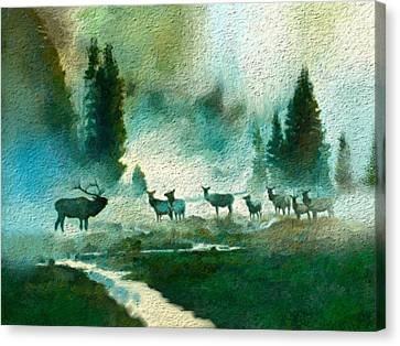 Nature Scene Canvas Print by Anthony Fishburne