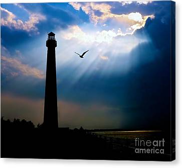 Nature Shines Brighter Canvas Print by Mark Miller