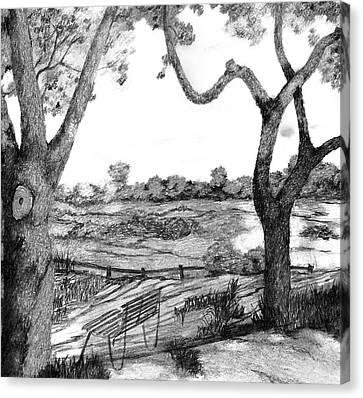 Nature Sketch Canvas Print by John Stuart Webbstock