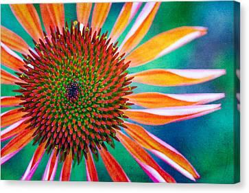 Natures Anti Depressant Canvas Print