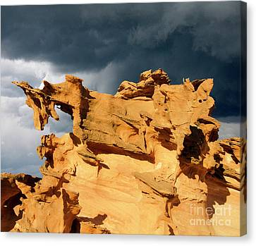 Canvas Print featuring the photograph Nature's Artistry Nevada 3 by Bob Christopher
