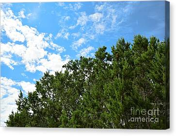 Canvas Print featuring the photograph Nature's Beauty - Central Texas by Ray Shrewsberry