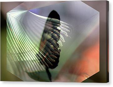 Canvas Print featuring the digital art natures Caress by Irma BACKELANT GALLERIES