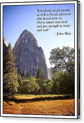 Natures Cathedral Canvas Print by Glenn McCarthy Art and Photography