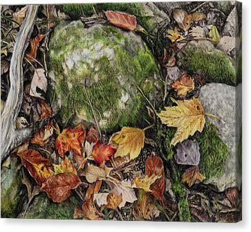 Nature's Confetti Canvas Print