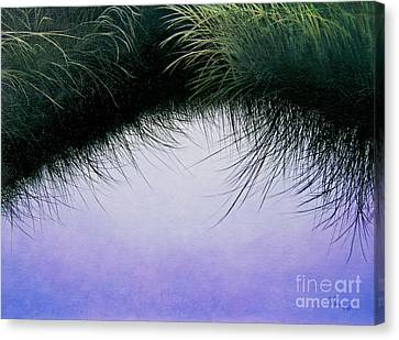 Nature's Eyelashes Canvas Print by Cindy Lee Longhini