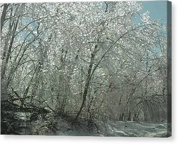 Canvas Print featuring the photograph Nature's Frosting by Ellen Levinson