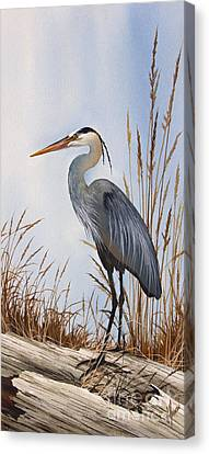 Great Blue Heron Canvas Print - Nature's Gentle Beauty by James Williamson
