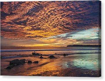 Nature's Glory Canvas Print