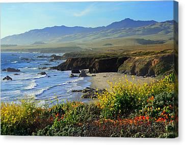 Nature's Landscape 2 Canvas Print