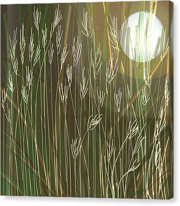 Nature's Landscape  Canvas Print by Denny Casto