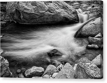 Canvas Print featuring the photograph Nature's Pool by James BO Insogna