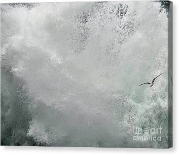 Canvas Print featuring the photograph Nature's Power by Peggy Hughes
