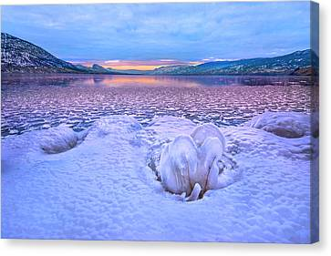 Canvas Print featuring the photograph Nature's Sculpture by John Poon