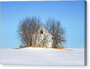 Nature's Shed Canvas Print by Todd Klassy
