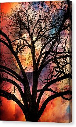 Tropical Colors Stain Glass Canvas Print - Nature's Stained Glass by Debra and Dave Vanderlaan