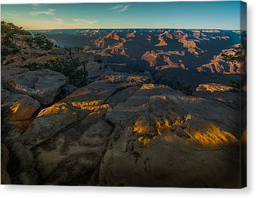 Nature's Wonder Canvas Print