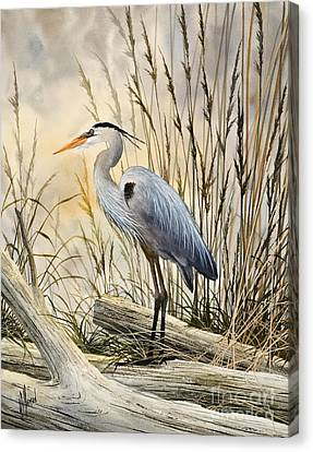 Great Blue Heron Canvas Print - Nature's Wonder by James Williamson
