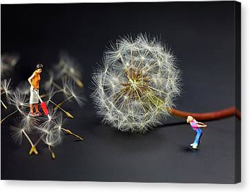 Canvas Print featuring the painting Naughty Girl Playing Dandelion Little People Big World by Paul Ge