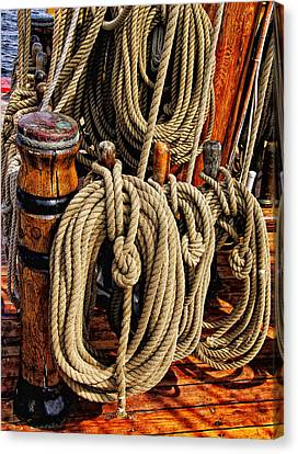 Nautical Knots 16 Canvas Print by Mark Myhaver