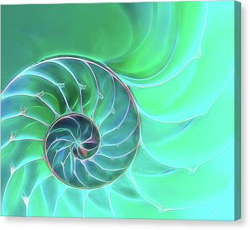 Nautilus Aqua Spiral Canvas Print by Gill Billington
